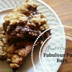 Fabulous Fudge Bars