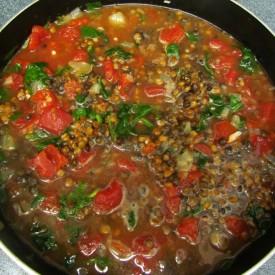 Lentil, Tomato & Spinach Soup