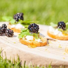Wild blackberry crostini