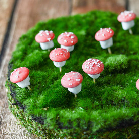 Chocolate Marshmallow Toadstools