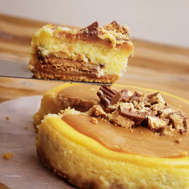 Reese Peanut Butter Cheesecake