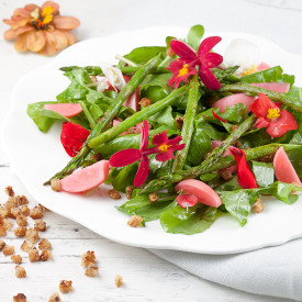 Green asparagus salad with flowers