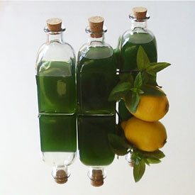 Minty Syrup Quick Version Recipe