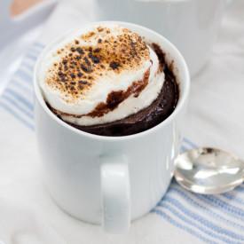 Quick Smores Mug Cake Recipe